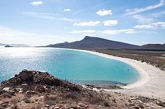 Isla Espíritu Santo - The beach on Espíritu Santo