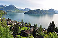 Lac des quatre cantons vu depuis les hauteurs de Vitznau.jpg