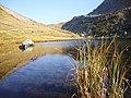 Laghetto del Montalon m.2089 - panoramio.jpg