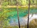 Lagoa Midões - panoramio.jpg