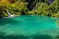 Lagoon in the park.jpg