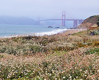 Mr. Monk and the Two Assistants - Baker Beach, where Ronald Webster's body was dumped