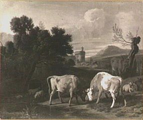 landscape with fighting bulls