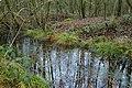 Landschap De Stroopers te Kemzeke - 371881 - onroerenderfgoed.jpg