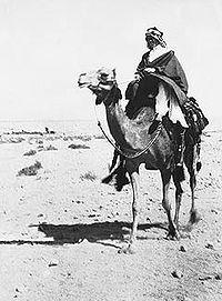 アラブ反乱 - Wikipedia