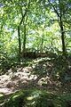Le Roc au Chiens Parc de Bagnoles-de-l'Orne.jpg