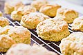 Lemon Scones (6849616359).jpg