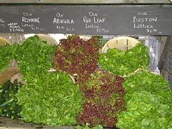 namn på olika grönsaker