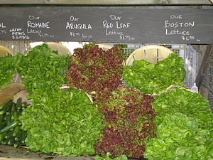 Lettuce Cultivars by David Shankbone, New York...
