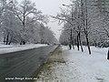 Liatoshinskiy str. - panoramio.jpg