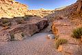 Little Wild Horse Canyon start (4053656544).jpg