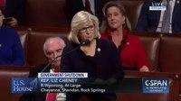 File:Liz Cheney criticizes the shutdown (00).webm