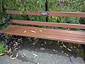 Long shot of the bench (OpenBenches 1742-1).jpg