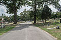 Looking N on Eastern Tour Avenue - Glenwood Cemetery - 2014-09-19.jpg