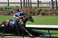 Los Alamitos Sept 2014 IMG 6726 (15317829465).jpg