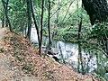 Los Gatos Creek Trail.jpg