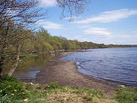 Lough Neagh at Shane's Castle - geograph.org.uk - 155427.jpg
