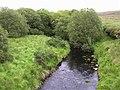 Loughermore River - geograph.org.uk - 528882.jpg