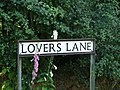 Lovers Lane Ludham - geograph.org.uk - 1122032.jpg