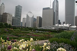Lurie Garden view with Michigan and Randolf streetwalls.jpg