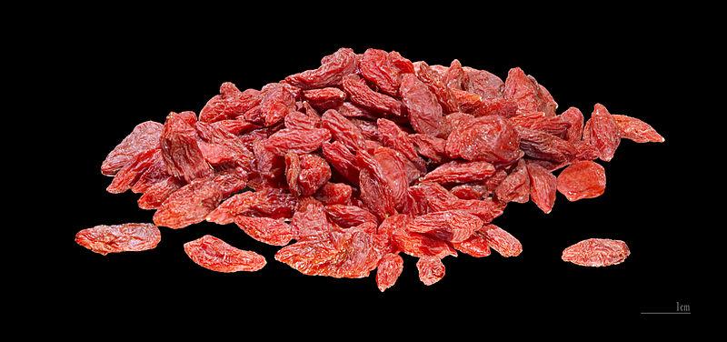 File:Lycium chinense MHNT.jpg