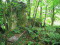 Lylston Row ruins, Monkredding.JPG
