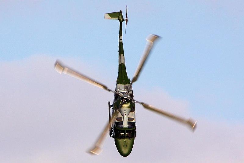 File:Lynx - Abingdon 2013 (8718230690).jpg