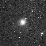 Malin1-HLA (cropped).jpg