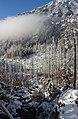 Maly studeny potok in winter, High Tatras, Slovakia.jpg