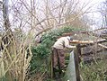 Man climbing over stile at Newington, Swale, Kent.jpg