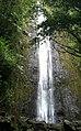 Manoa Falls, Hawaii, March 2012.jpg