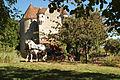 Manoir de Courboyer(61340 Nocé)Cl J Weber07 (23975337752).jpg