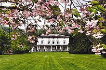 Photographie d'une résidence bourgeoise à deux étages. Une large pelouse tondue se trouve devant et le haut de la photographie est masquée par des fleurs de merisier.