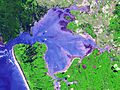 Manukau Harbour (satellite image).jpg