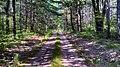 Marilla Township, MI, USA - panoramio.jpg