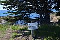 Marine reserve near Sea Ranch Abalone Bay Vacation Rental.jpg