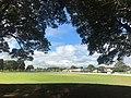 Marrickville Oval.jpg