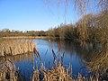 Martin's Pond, Wollaton - geograph.org.uk - 1742607.jpg