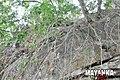 Mayanka Falls - Rock.jpg
