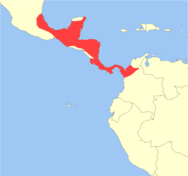Mazama temama distribution.png