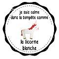 Medaille-yoga-licorne.JPG