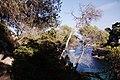 Menorca - 50291419787.jpg