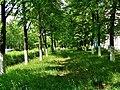 Miass, Chelyabinsk Oblast, Russia - panoramio (51).jpg