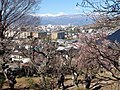 Minami Alps to look at from Furoen B.JPG
