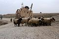 Mississippi Guardsmen recover vehicles throughout northern Iraq DVIDS245587.jpg
