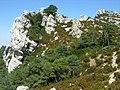 Monte Caro - panoramio (1).jpg