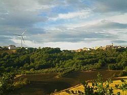 Montelongo113.jpg