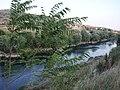 Moraca - panoramio - ines lukic (2).jpg
