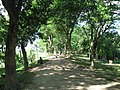 Mound of Chandraketugarh 01.jpg
