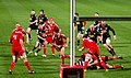 Munster vs Scarlets - panoramio.jpg